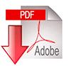 100-pdf