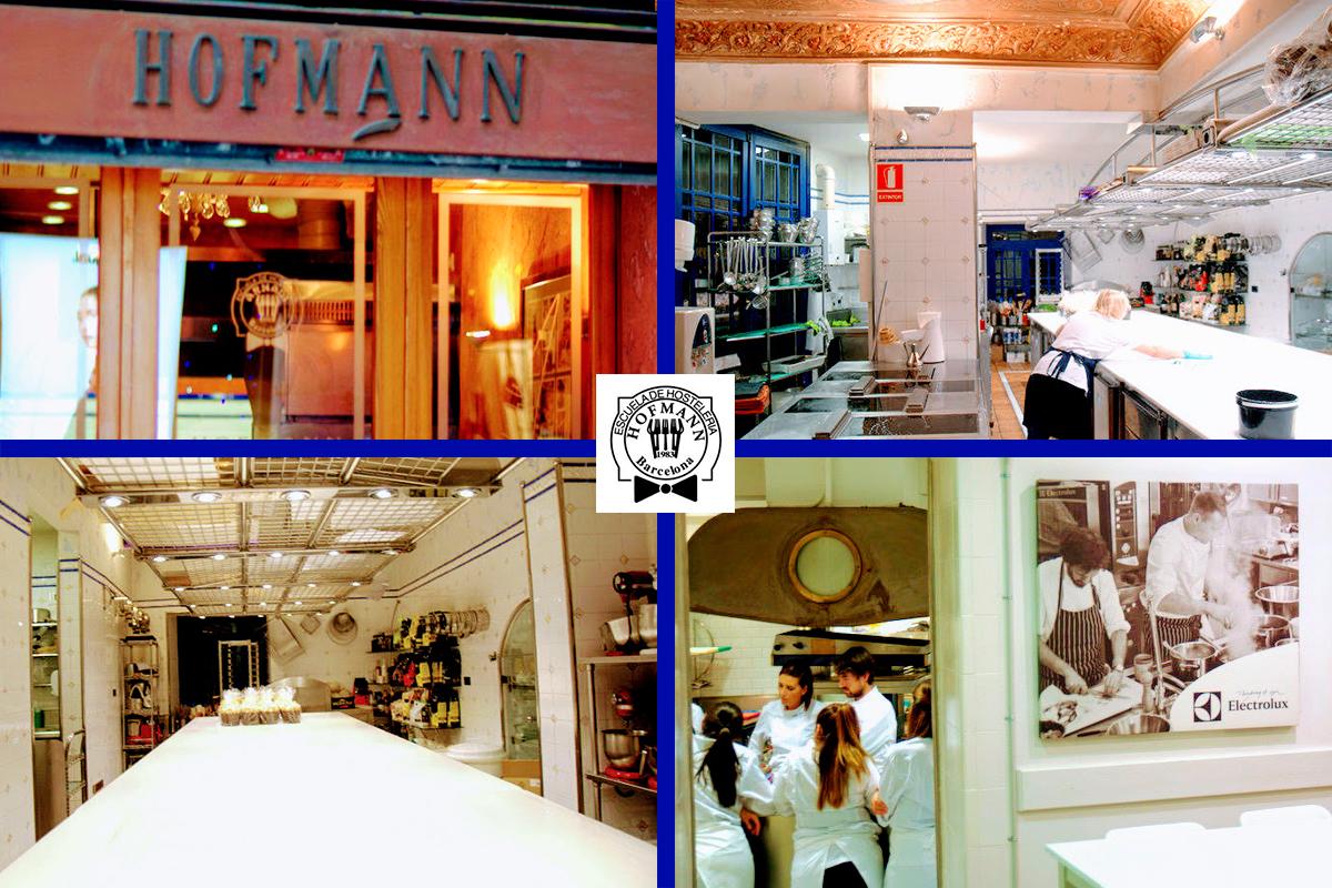 Classes magistrals d'Història - Escola Hofmann